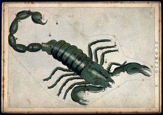 Astrology_signs_of_the_zodiac_Scorpio._Coloured_engraving._Wellcome_V0024929